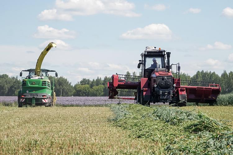 «Себестоимость растет, потому что цены навсе, что нужно для производства,— техника, удобрения, семена,— высокие ипродолжают расти»