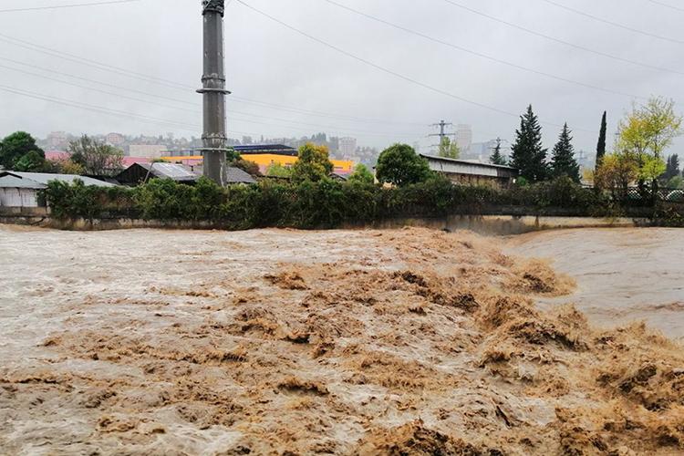 Сразу все горные реки — Кепша, Кудепста, Хоста, Мацеста и Хорота поднялась до критических отметок, а местами и вышли из берегов, превратив городские улицы в грязно-мутные ревущие потоки
