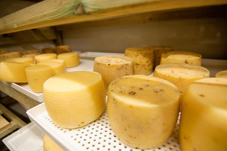 «Мысейчас потребляем порядка 5,5-6 килограммов сыров надушу населения вгод, это очень немного.Бизнес видит эту историю, сейчас заявлено проектов более чем на200-250 тысяч тонн производства всех видов сыров вближайшие 3-4 года»