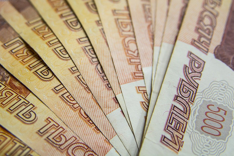 Среднегодовой доход Шишкиной (в2010–2014 годах) составлял 30млн рублей, что, помнению «Зенита», несопоставимо собъемом активов