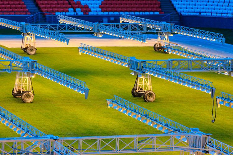 Полем занимается московская фирма«СпортиКо», которая обслуживала газон вКазани наКубке конфедераций-2017 ичемпионате мира-2018