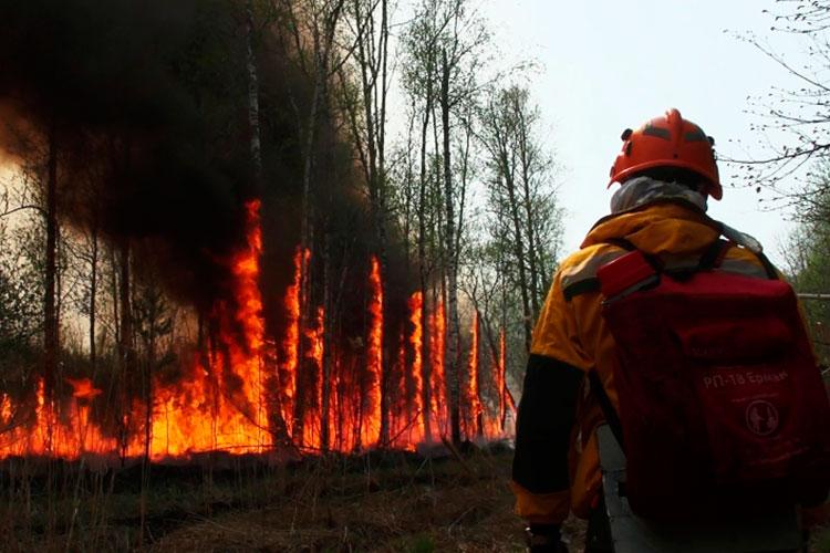 Пять районов на юге Башкортостана, где горят леса, расположены на некотором удалении от Татарстана, ближе к Оренбургской области. В последней пожар с 6 августа полыхает в Кувандыкском городском округе, там введен режим ЧС
