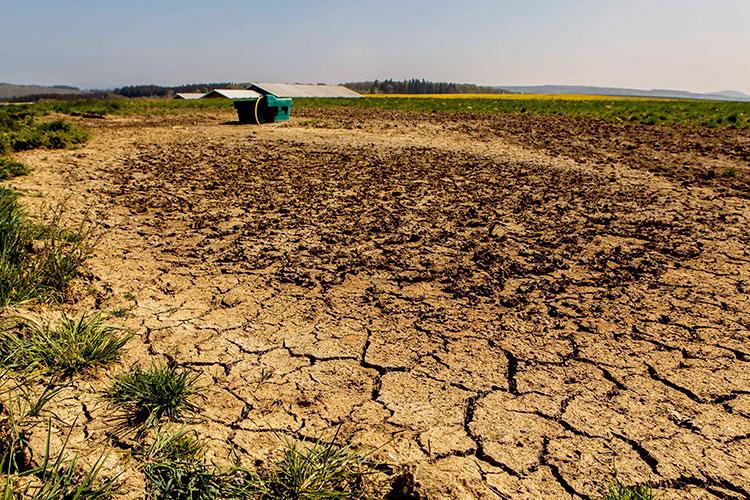 «Насегодняшний день упредприятий недобор средств из-за засухисоставляет порядка 28 миллиардов рублей»