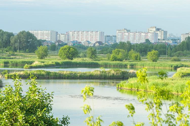 Последним пунктом назначения оказалась набережная реки Мелекески. Здесь чиновники обсудили проект очистки реки, самый масштабный изтрех.Работы понему разбиты надва этапа, вопрос сфинансированием первогоуже решен. 160млн рублей город получит врамках национального проекта «Экология»