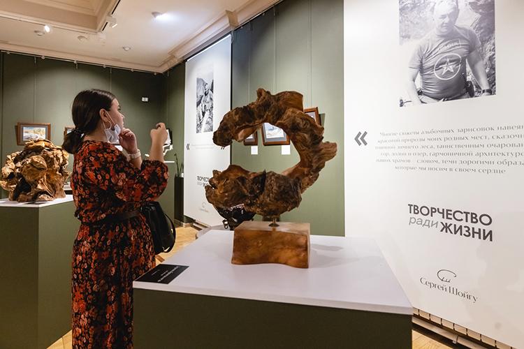 Навыставке художественных работСергея Шойгупод названием «Творчество ради жизни» опроизведениях главы оборонного ведомства искусствоведы говорили только ввосхитительных тонах