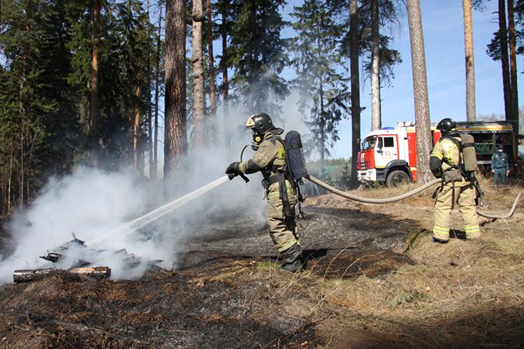 Сначала года вТатарстане зарегистрировано 13 лесных пожаров натерритории лесного фонда