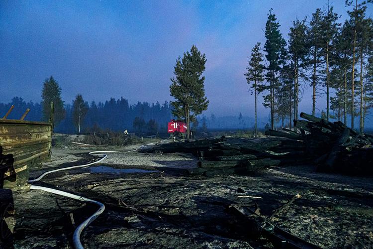 Состороны Марийской республики мыгеографически наблюдаем ихактивную зону горения— это Медведевский район, территориально западнее Йошкар-Олы, поэтому кнашим граница пока угрозынет