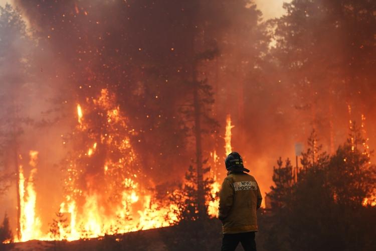 Вэтом году вРоссии произошло 12,8тыс. пожаров наплощади более 10млн гектар