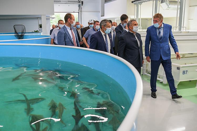 Собственник «Биосфера-Фиш» Владимир Малыгин (справа) сообщил, что открытие форелевого завода запланировано на конец сентября 2021 года. Производство завода спроектировано по датской технологии. Объем инвестиций (всех трех очередей) составляет более 750 млн рублей