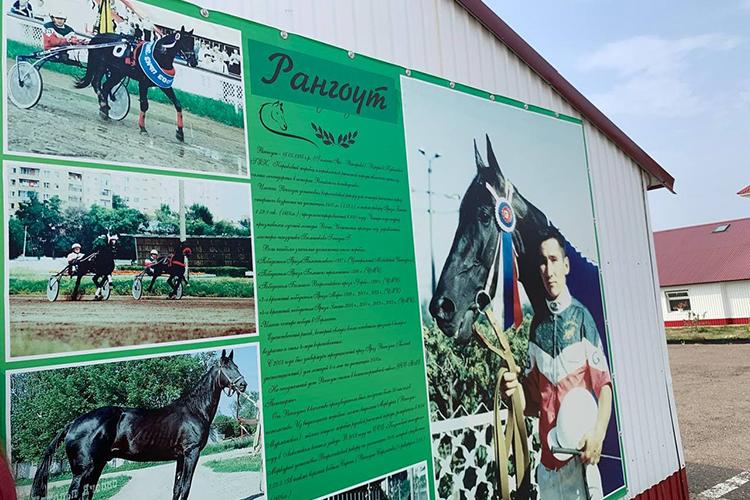Натерритории комплекса вКичучатово есть мемориальная аллея, где находится могила легендарному вистории коневодства «Татнефти» коню покличке Рангоут. «Онпал 31мая. Это конь, который прославился навсю Россию»