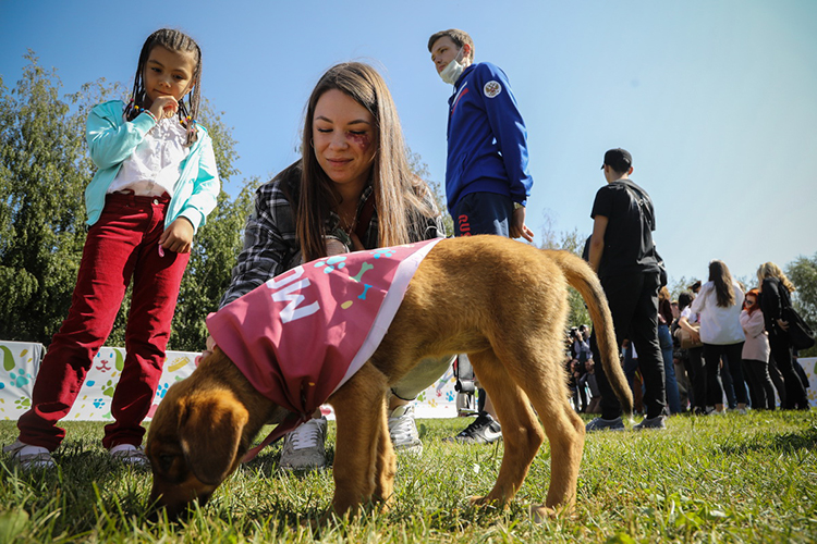 Узолотой рапиристки Татарстана еще нет собаки: пословам Марты, онабы хотела еезавести, когда перестанет ездить между городами истранами