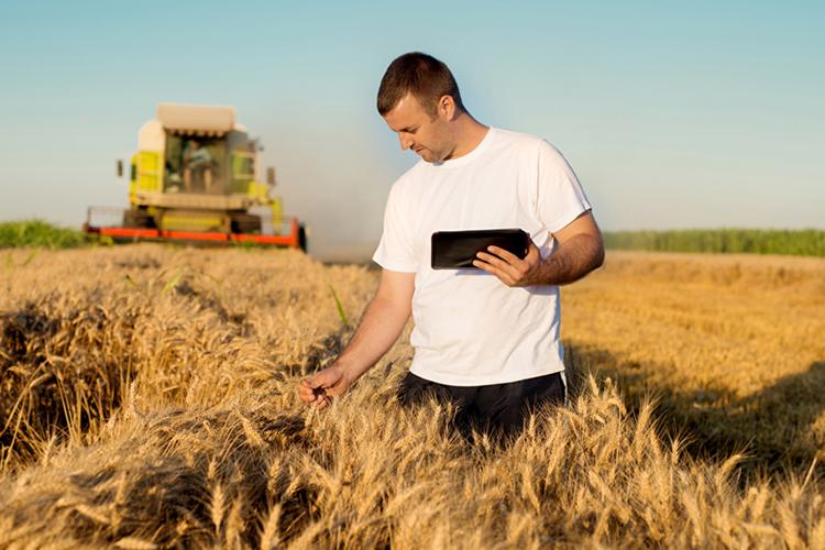 «Для тех, кто только запускает свой бизнес, действует тарифный план «Агростарт». Для развивающихся предприятий АПК— это тариф «Агророст» идля крупных фермерских хозяйств разработан тариф «Агропремиум»