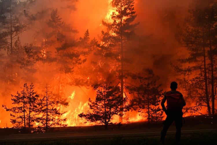 «Сам посебе лесной пожар отвысокой температуры невозникает. Новысокая температура изасуха делают экосистемы предрасположенными кболее легкому возникновению лесных пожаров»