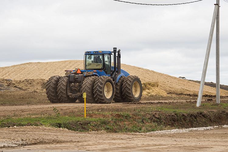 «ВТатарстане унас 3 тысячи гектаров земли, которые вэтом году были заняты под посевы зерновых культур, кукурузы имноголетних трав»
