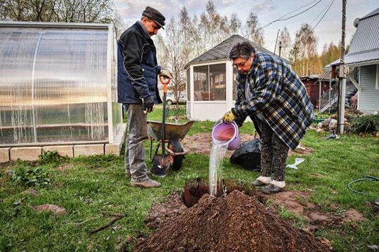 «Необходимая оплата прежде всего управлению, которое все организует: подачу воды, работу скважины, подачу электроэнергии, охрану, то есть все действия, без которых не будет садоводческого товарищества»