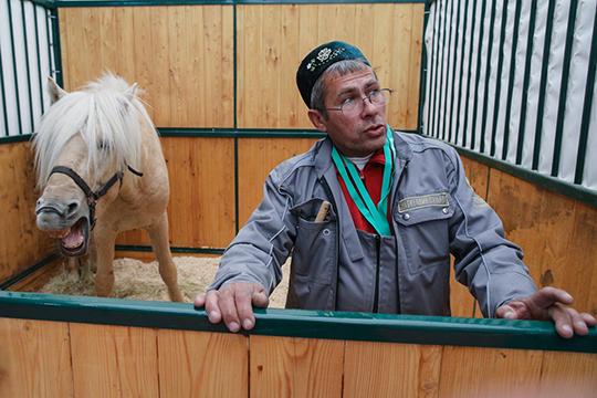 Республика в этом году привезла на выставку двух жеребцов татарской породы