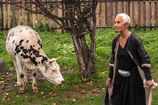 Бекмамбетов при свете факелов, диссидент изXVII века ипрогулки коров созвездой