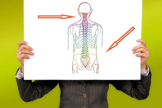 Сточки зрения остеопатии (наука обиомеханике тела), боль вгрудном отделе позвоночника— это следствие нарушения биомеханики всего позвоночника итела