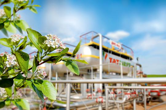 В этом году у «Татнефти» заканчивается очередная экологическая программа и будет приниматься новая — беспрецедентная по мастшабу. Например, она будет включать в себя высадку 2 млн деревьев в год