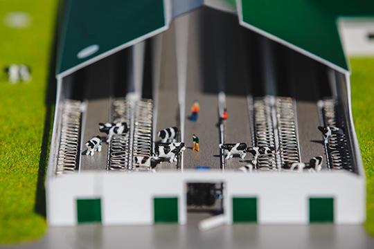 Более 99% капитала одного из крупнейших аграхолдингов Татарстана —ООО «Союз-Агро» —оформлено на ООО «Агросоюзинвест»