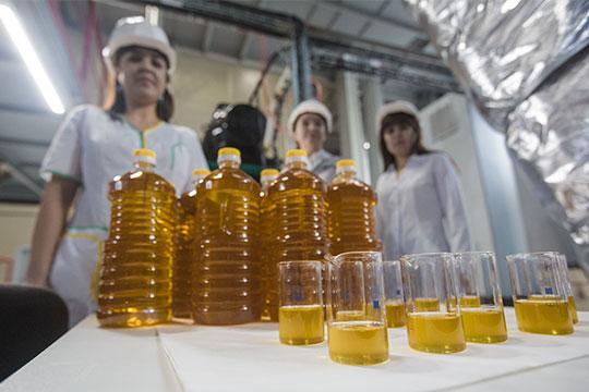 «Нэфис» специализируется напроизводстве масла, «Татнефть» тоже экспериментирует вэтом направлении