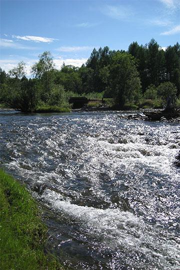 Горная река в долине