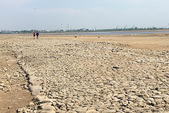 Вспомнил министр экологии об обмелении Волги 2019 года, что создало угрозу водно-биологическому комплексу и породило сложности для речного транспорта
