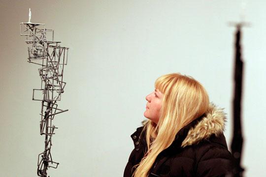 В галерее современного искусства «БИЗON» будут представлены инсталляции известного московского художника Дмитрия Каварги