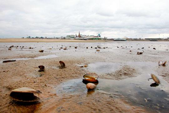 Обмеление реки Казанка, 2010 год