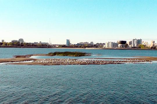 Казанские экологи бьют тревогу – на Казанке «всплыли» острова. Главная водная артерия города мелеет, вскрывая все то, что еще летом было сокрыто под толщей воды