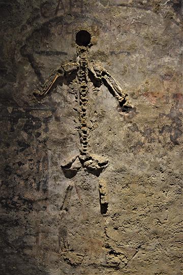 Останки скелета неаполитанского художника, удостоившегося чести вертикального «захоронения»