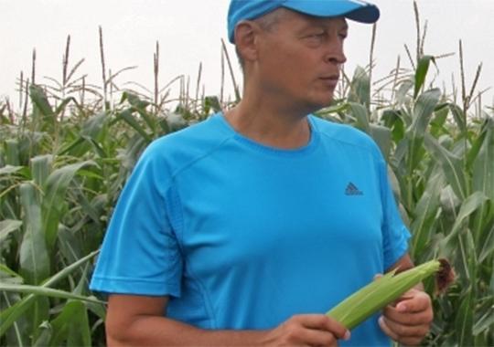 Айрат Хайруллин, комментируя ситуацию, отмечает, что нашествие кабанов на поля ведет сельхозпроизводителей к бедственному положению