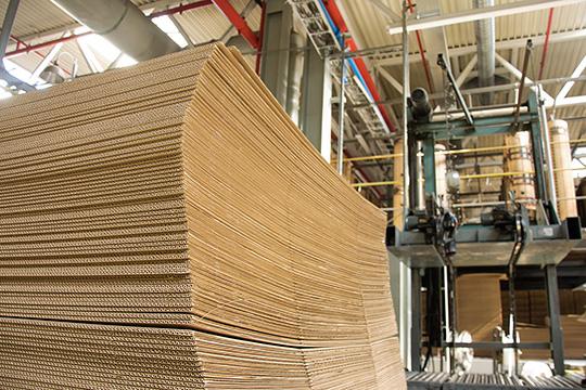 Картонно-бумажный комбинат продолжает наращивать выручку, носнизил темп