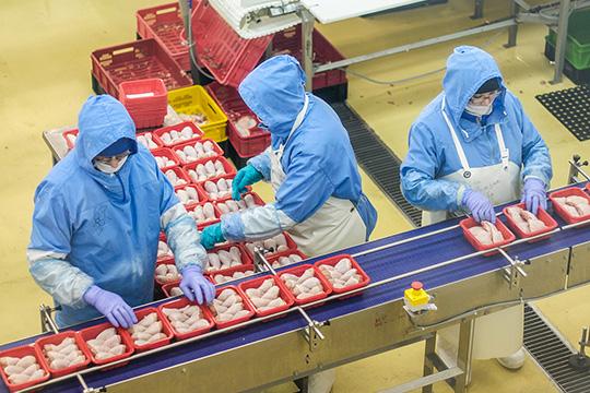 «Челны-Бройлер»— одна изсамых высокоприбыльных компаний Татарстана