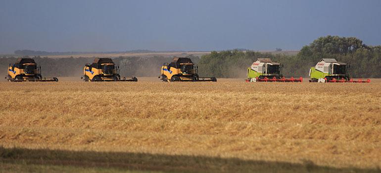Зерновых собрали на25% меньше, чем в2017 году
