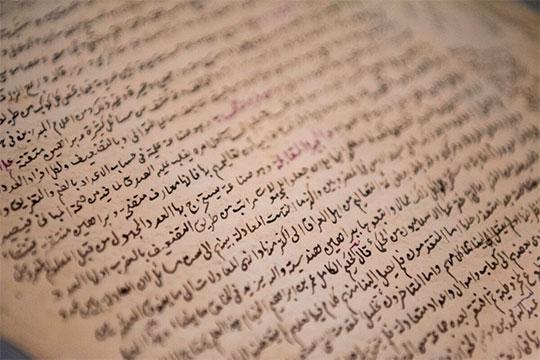«Исламский мир плохо знает онашем вкладе вмусульманскую цивилизацию»