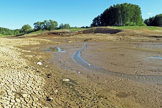 «Раньше гордились мыэтим озером, асейчас…»: почему слили Чебаксинский пруд?