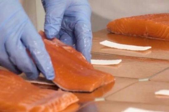 «Затем филе рыбы (пласт) поставляют навиды разделки, укладывают ввакуум»
