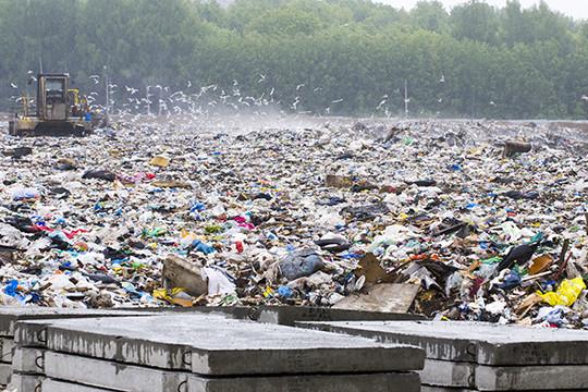 «В Европе хорошо знают плюсы иминусы технологий, идавно отказались отзакапывания мусора вземлю»