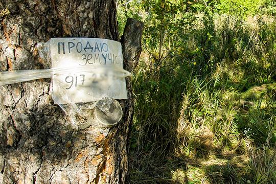 Как только обременение будет снято, участок вернется в собственность Тукаевского района