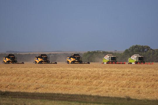 «Практически сначала ХХвека сельское хозяйство вРоссии является проблемной зоной всилу того, что мынеумеем имзаниматься»