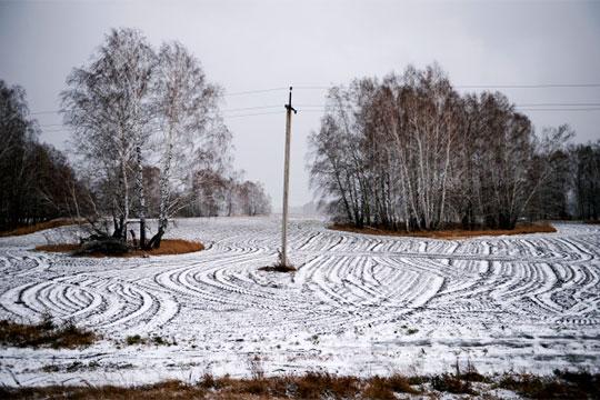 Хозяева простаивающей сельхозземли начали вконце прошлого— начале этогогода едвали немассово ипо«смешной» цене сдавать ееваренду фермерам