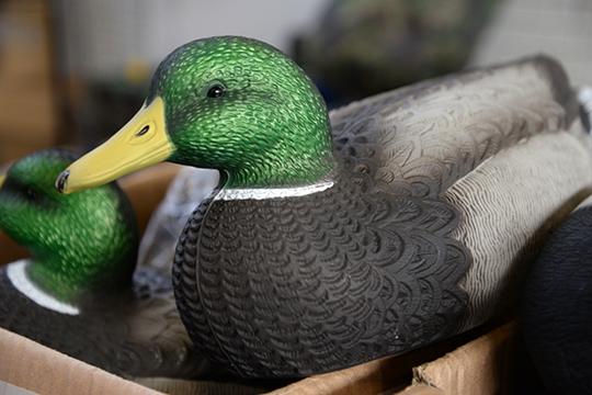 ВТатарстане сроки весенней охоты регламентируются указом президента РТ, покоторому началосезона традиционно устанавливается начетвертую субботу апреля