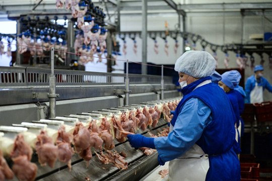 «Чишмэ» зашла вТОСЭР осенью 2017 года, как переработчик мяса птицы ирыбы сзаявленными инвестициями науровне 176,7млн рублей иштатом 78 человек